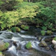 雄大な阿蘇山の自然が育んだ天然水