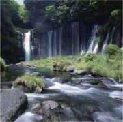富士山の天然水をそのまま、産地直送でお届け