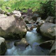 島根の良質な地形から生まれた金城の天然水を、産地直送でお届け。